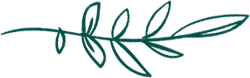 Lilys-leaf-texture